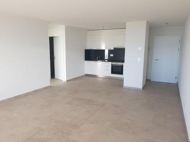 Grand appartement 2.5 pièces vue sur lac 32778136
