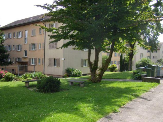 3.5-Zimmer-Wohnung in Grenchen 27017845