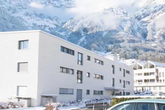 Wohnung mit Blick auf das Glarner Bergpanorama 25499017