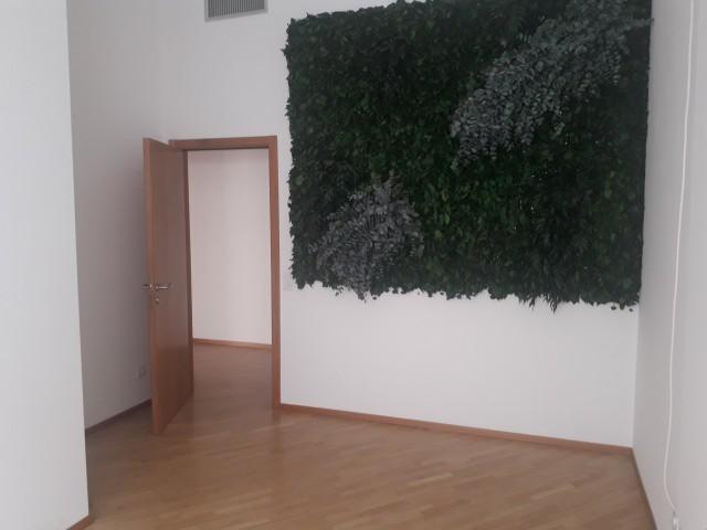 Spaziosi Uffici con vetrina a Lugano 31799960