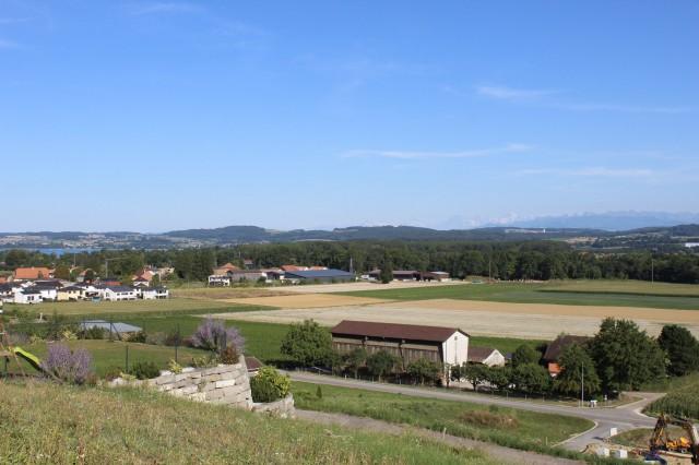 Alpenpanorama und Seesicht in Salavaux / Constantine 20159735