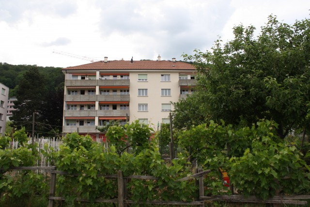 APPARTEMENT PPE 4 pièces, env. 98m2, 1er étage (rez sup.) av 25530687
