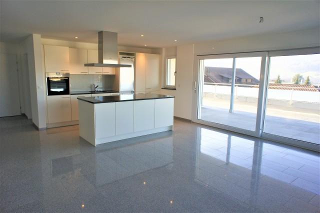 Küche mit Kochinsel & Wohnraum