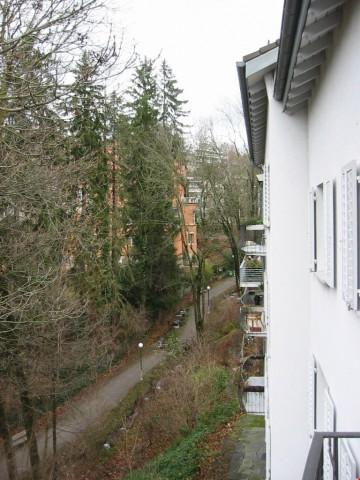 Im Grünen am Zürichberg 31759637