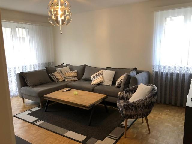 Gemütliche 4-Zi-Wohnung in Ebikon 27058067