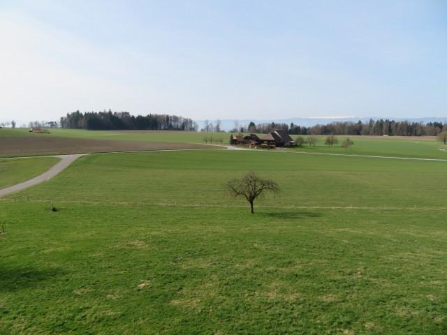 Grosse Wohnung in Mühleberg mit Blick ins Grüne 25510064
