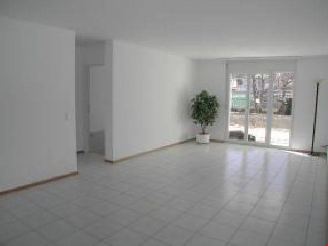 Grande appartamento di 4,5 locali al PT con giardino privato 20382855