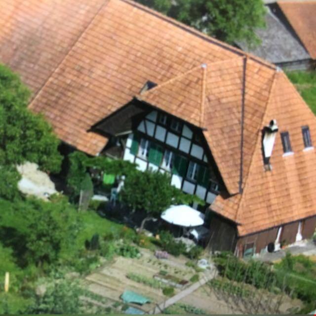 Dachwohnung in renoviertem Bauernhaus 31759775