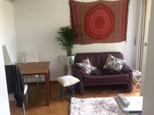 Grosse 1 1/2-Zimmerwohnung mit Balkon 32402363