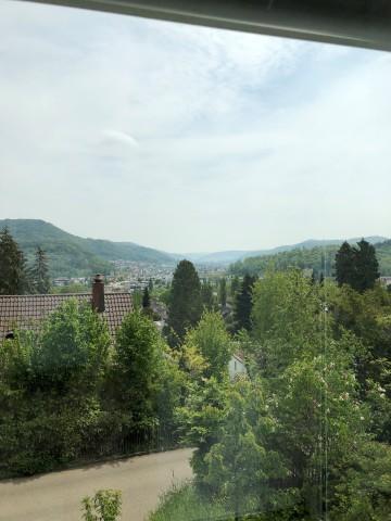 4,5-Zi Wohung mit eigenem Garten an top Aussichtslage in Lie 29867643