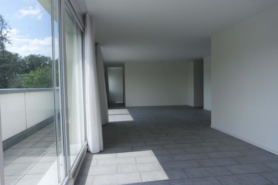 Grosse und sehr moderne Attikawohnung mit grosser Terrasse