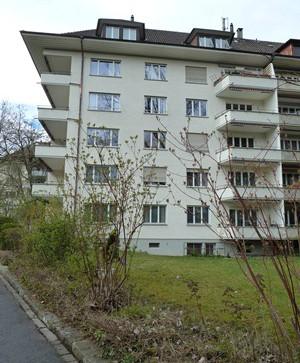 2.5-Zimmerwohnung im Elfenau-Quartier