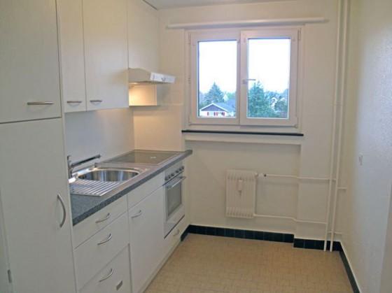 neue Küche (Glaskeramik, Dampfabzug, Geschirrspüler)