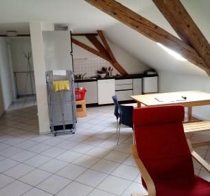 4,5-Zimmer-Dachwohnung inkl. Garage im Naturpark Thal