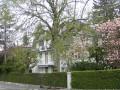 6 - Zimmerwohnung Kirchenfeld