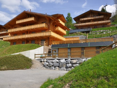 """APPARTEMENT """"LE SASSET 6"""" SKI IN AND OUT"""
