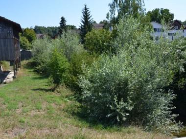 Bauland mit bewilligtem EFH-Projekt in Niederbüren