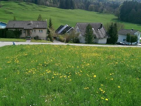 Bauland Ziegelweg in Balsthal