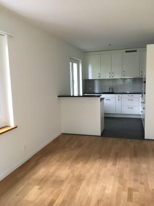 Wohnzimmer mit moderner, offener Küche