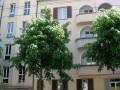 Grand 3,5 pièces / 80m2 / 2ème étage / Bienne