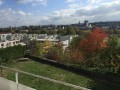 Mit Blick auf Aarau