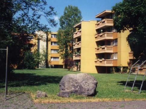 Renovierte 2 1/2-Zimmerwohnung mit Balkon und viel Grün