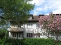 Ruhige und sonnige 4-Zimmer Wohnung im Elfenauquartier