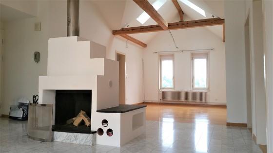 Wohn-/Esszimmer mit freistehendem Cheminée