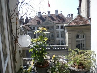 Schöne, sonnige Altstadtwohnung