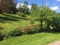 Sonnige Gartenwohnung über der Stadt Baden