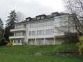 Sonnige renovierte 3.5-Zi-Wohnung im Zentrum