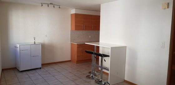 Espace cuisine-pièce à vivre - photo No 1