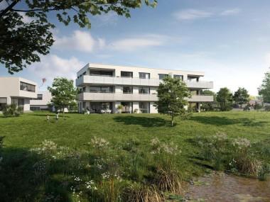 Dorfwiese Berg - Wohnen im Grünen - zwischen Bodensee und St. Gallen