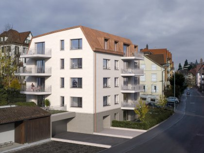 Neubau Demutstrasse 18