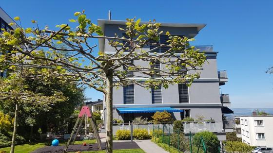 Gebäude Rückseite - W14