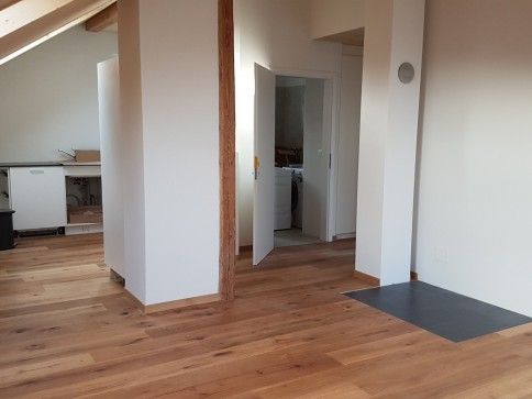 3 1/2 Zimmer-Wohnung Erstvermietung