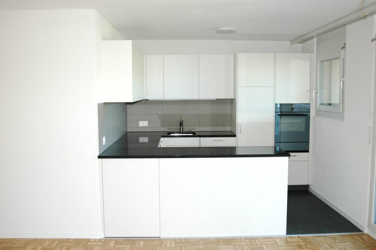 Moderne Küche Mit Hochwertigen Geräten (2.OG 01)