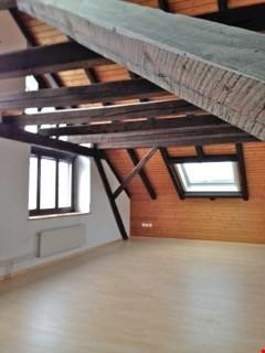 Helle 3,5 Zimmer Dachgeschoss Wohnung mit Grün