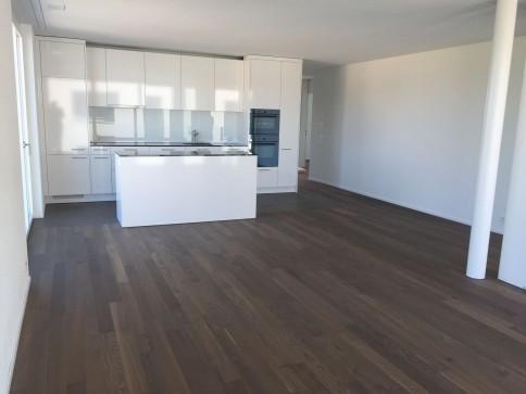 NEUE 4.5-Zimmerwohnung mit grosser Terrasse (31 m2)