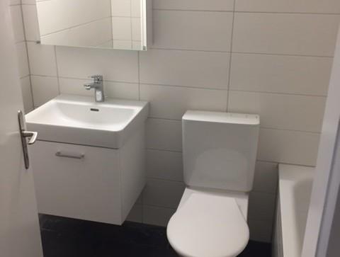 Totalsanierte 2 1/2-Zimmerwohnung zu vermieten