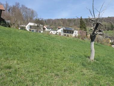 Wohnen im Grünen mit Blick auf Schloss Gilgenberg