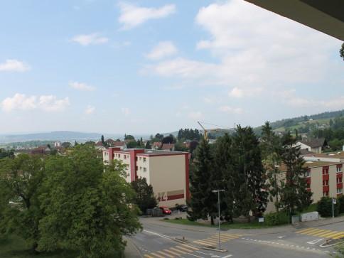 Wunderschöne Aussicht auf die Alpen!