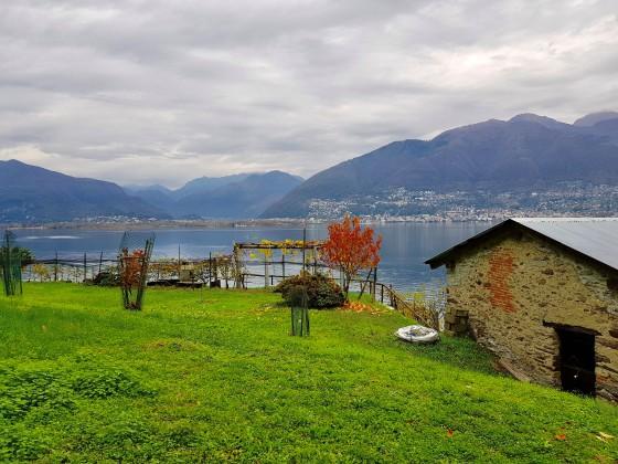 Wiese und Aussicht / Prato e vista