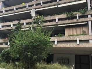 3.5 ZimmerWohnung mit Cheminee und grossem Balkon