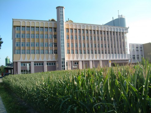 Büro-, Gewerbe- und Fabrikationsräume - steuergünstige Gemeinde Widnau