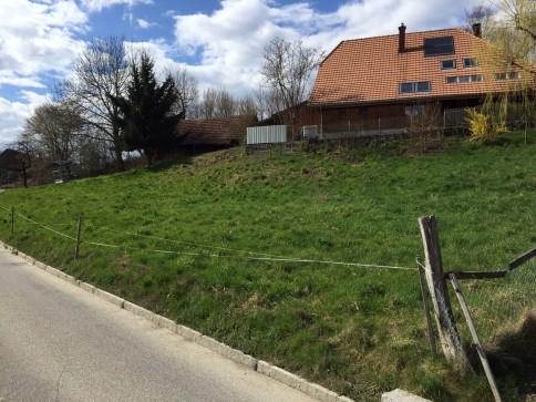 Grosszügige Baulandparzelle ohne Architekturverpflichtung