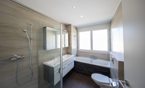 Badezimmer / WC / Dusche