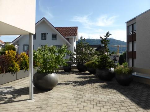 Oberägeri, 3 1/2 Zimmer mit grosser Terrasse