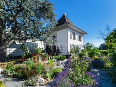 Stilvolle Altbauliegenschaft (totalsaniert) mit traumhaftem Garten