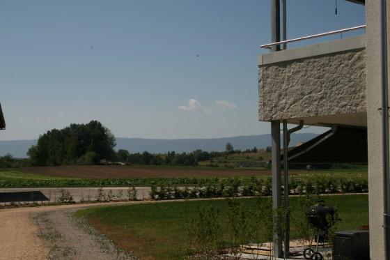 So weit das Auge reicht, Sicht aus der Siedlung ins Grüne